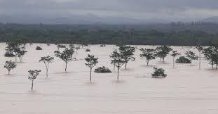 Chuva elevou nível dos rios no Marajó a um patamar histórico.