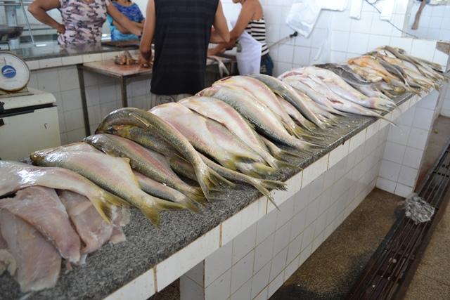 Cerca de 200 toneladas de pescado à venda na Feira do Peixe Popular