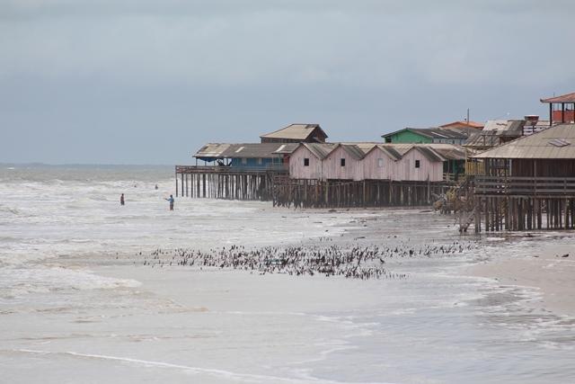A bela praia Ajuruteua.