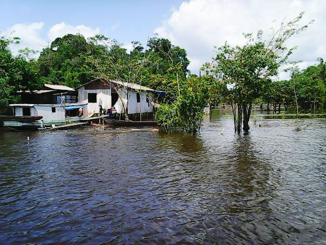 As casas não foram invadidas pelas águas, mas perderam a produção agrícola