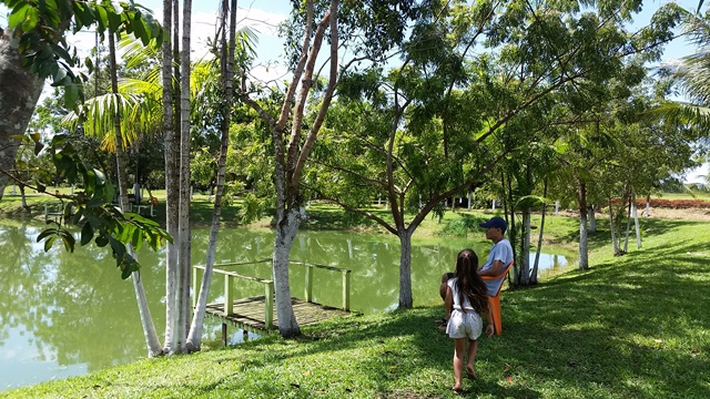 O Pesque-Pague está numa área repleta de verde e árvores