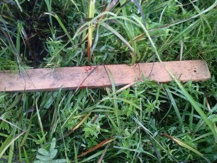 Pedaço de madeira usado no crime