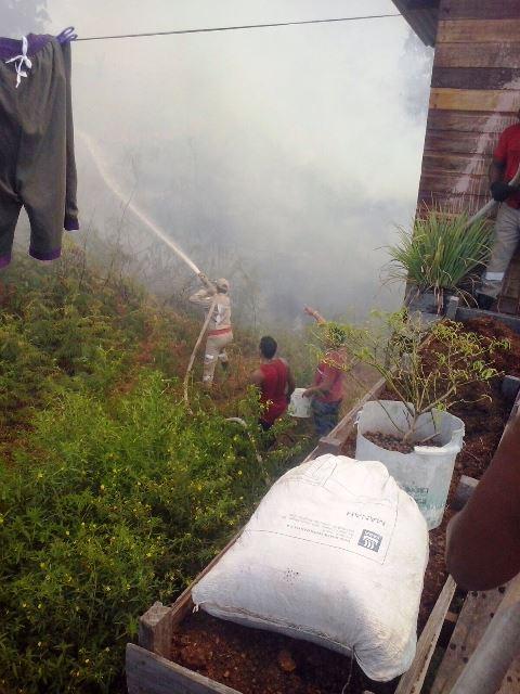 As chamas chegaram muito perto das casas. Fotos: Sargento PM Tânia