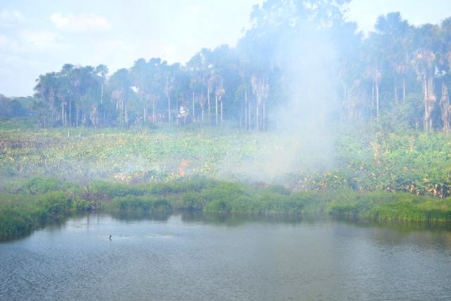 A vegetação seca causa a fumaceira na Lagoa dos Índios. Fotos: André Silva