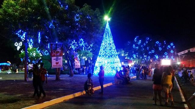 Uma das duas grandes árvores montadas pela Fecomércio na Praça Barão do Rio Branco. Fotos: Seles Nafes
