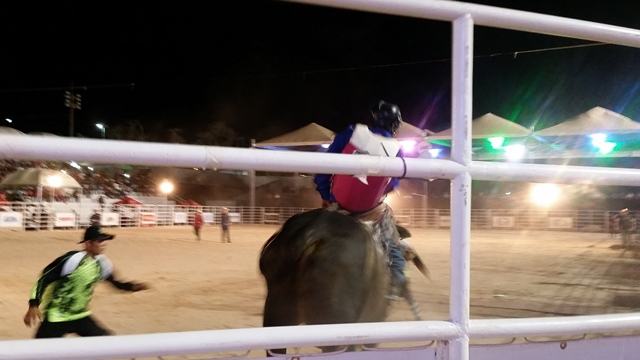Peão conseguiu ficar mais de 8 segundos em cima do touro. Fotos: Seles Nafes