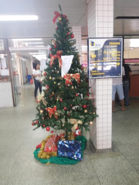 A árvore fica no saguão do Hospital de Alberto Lima. Fotos: Cássia Lima