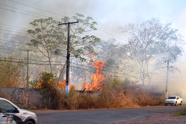 O) fogo também chegou a ameaçar a rede elétrica