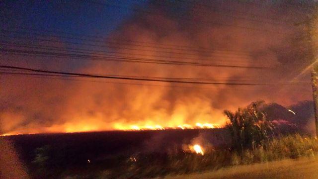 Até às 19h o fogo ainda não havia sido controlada. Foto tirada por Tica Lemos