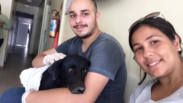 Cadela foi resgatada pelos Anjos Protetores: primeiro caso de zoofilia