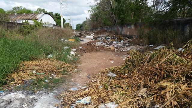 São cerca de 300 metros de lixo e entulho. Fotos: Seles Nafes