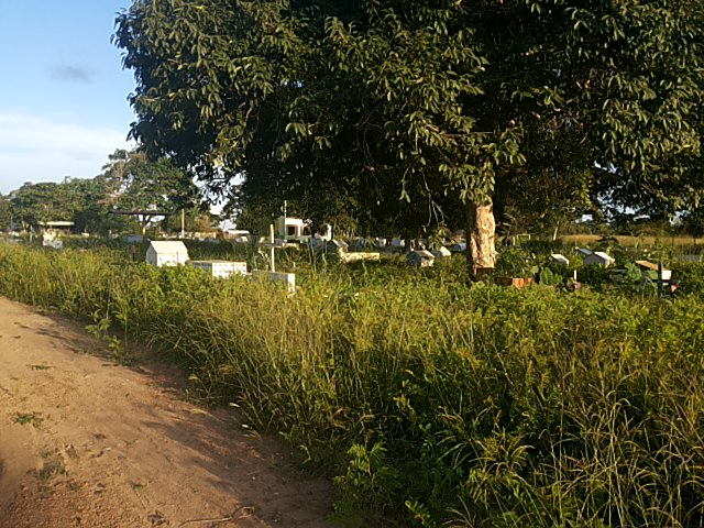 cemitério 3