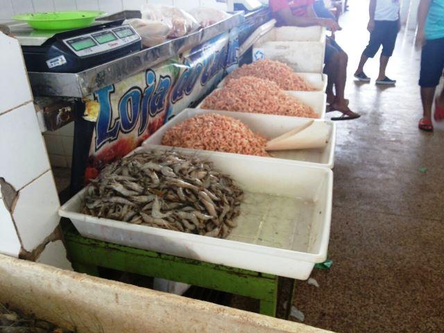 Além de peixe, a feira tem muita oferta de camarão