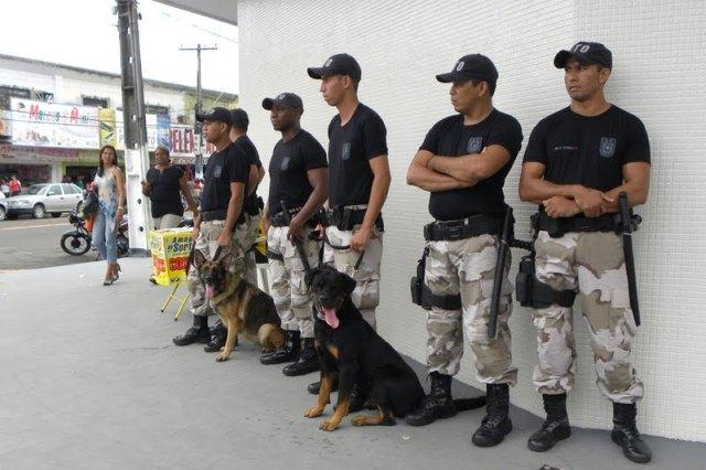 Cães usados pela Guarda Municipal