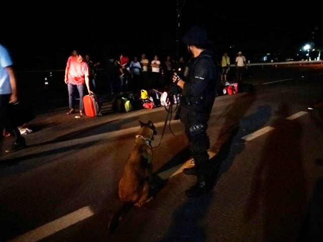 Policial com cão farejador observa passageiros