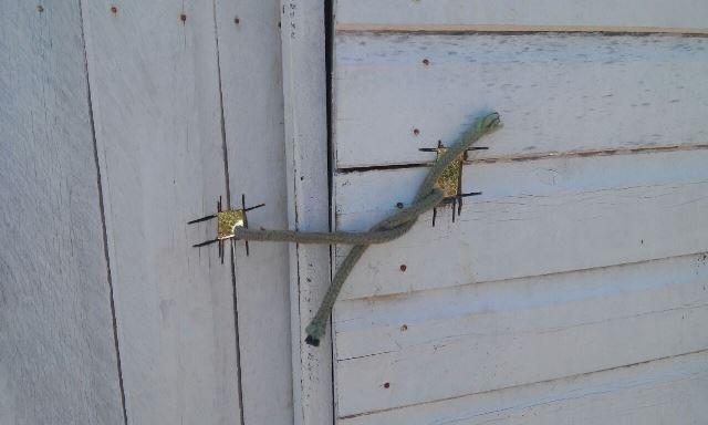 Corda é usada para amarrar a entrada do canteiro de obras. Fotos: Cássia Lima
