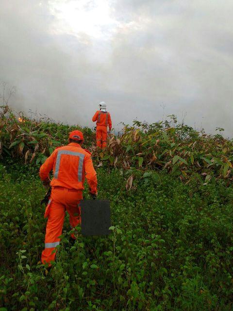 incendio ocorrido no pantanal