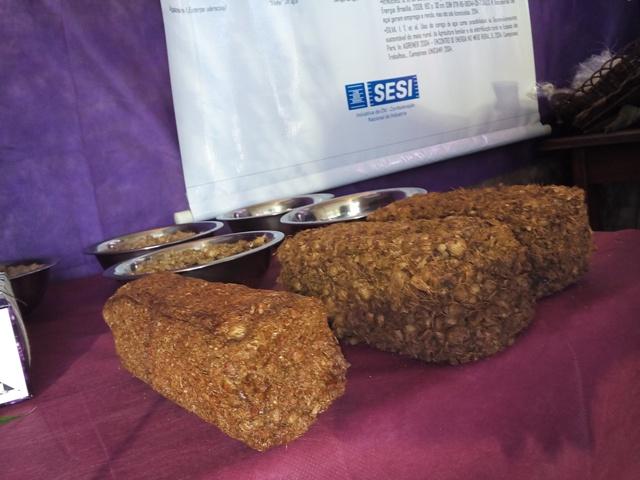 Caroços de açaí são transformados em tijolos que podem substituir o carvão