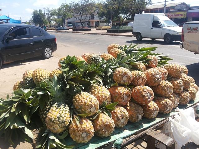 Fruta sendo vendida nas ruas de Macapá. Maior parte da produção é oriunda de Porto Grande. Fotos: Cássia Lima