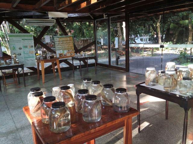 Mostra foi montada na 'Casa de Vidro' do Museu Sacaca
