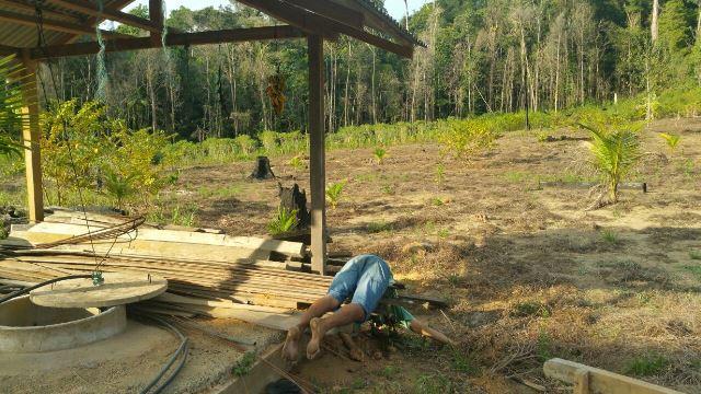 Francisco Viana estava sentado num galpão de madeira em construção, e estaria usando uma faca