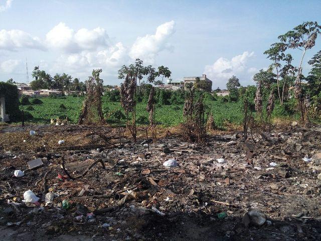Área devastada por incêndio