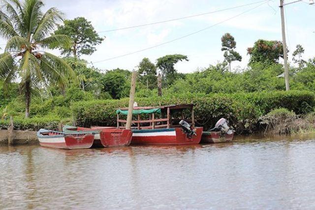 Paisagem amazônica também integra o vasto repertório de imagens da fotógrafa