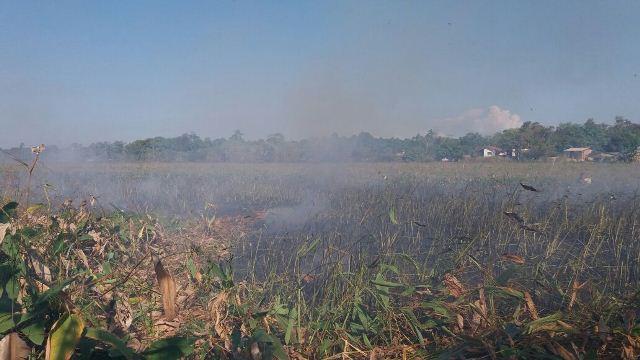De acordo com relato de moradores, fogo havia baixado e retornou com força nesta quarta. Fotos; André Silva
