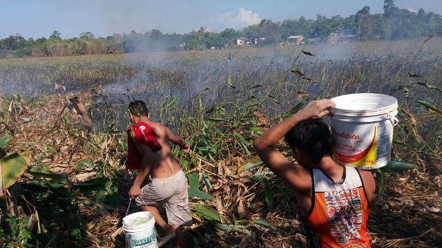 Moradores tentam conter as chamas com baldes de água