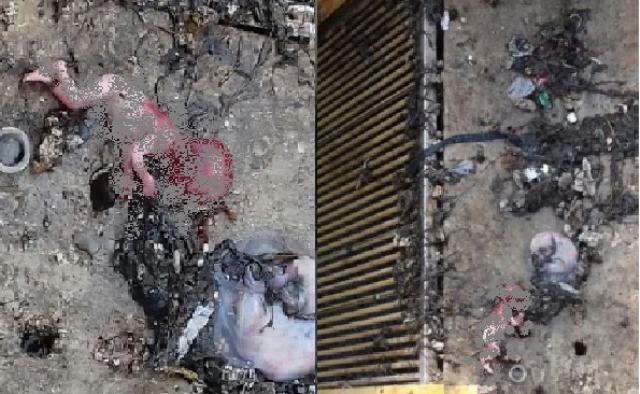 Registro do feto encontrado, próximo da grade de esgoto. Foto: 2º BPM