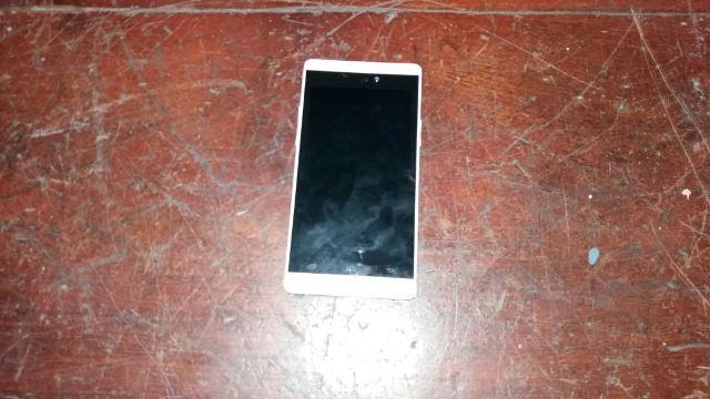 Celular foi recuperado pelos guardas. Fotos: Olho de Boto