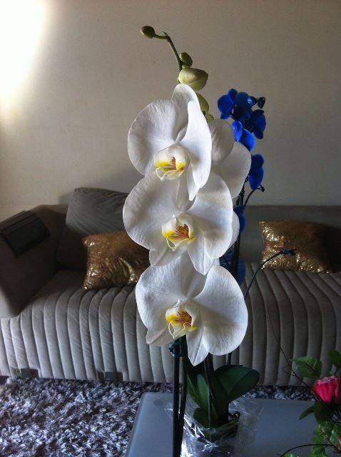Arranjo de flores que Sérgio gostava muito. Foto enviada pela família