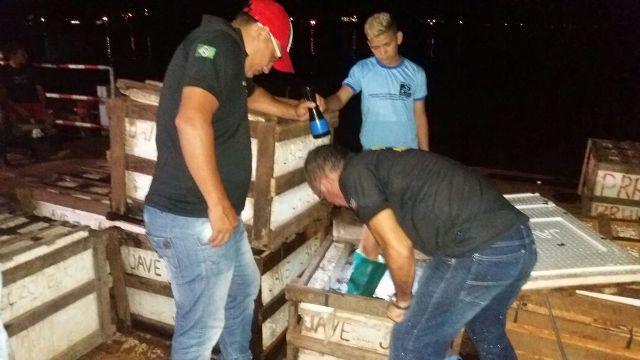 Pescado foi doado para comunidades carentes. Fotos: Imap/divulgação