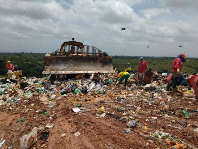 Bebidas descartadas no lixo. Fotos: ascom PMM/divulgação
