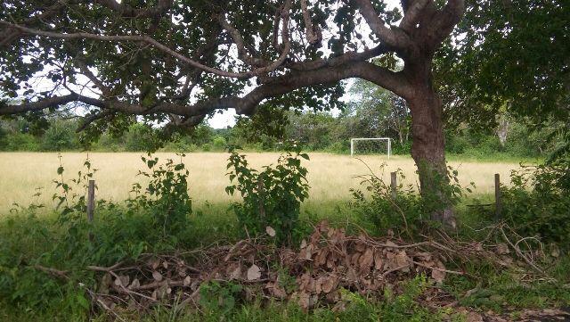 Campo de futebol tomado pelo mato
