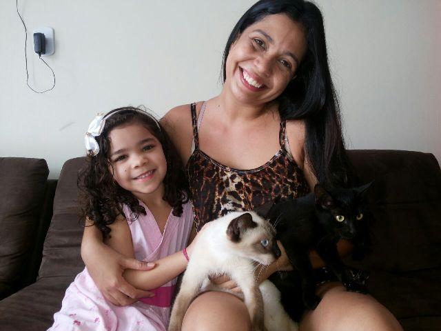 Gatos que Maria Luna trouxe para casa. Fotos: arquivo familiar