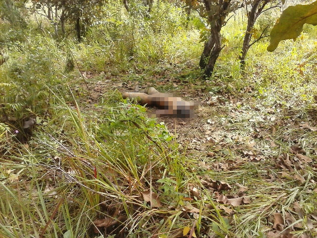 Corpo encontrado na área da Unifap era de menor desaparecido