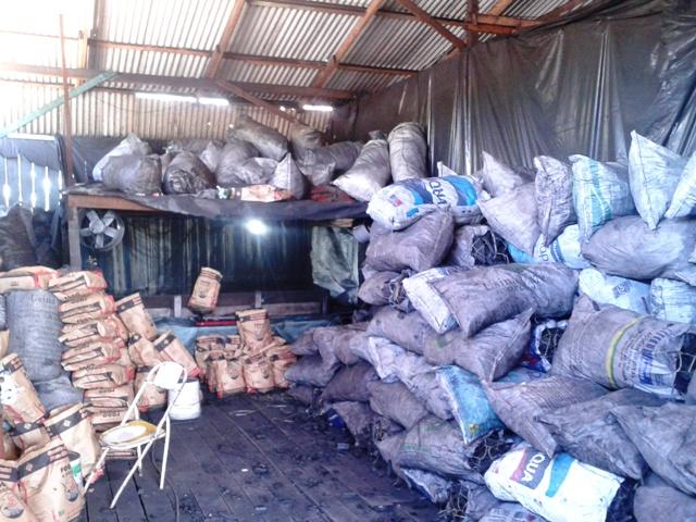 Polícia apreende 18 toneladas de carvão clandestino