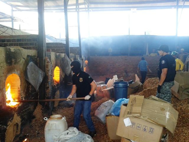 Maconha: Polícia incinera 70 quilos de drogas