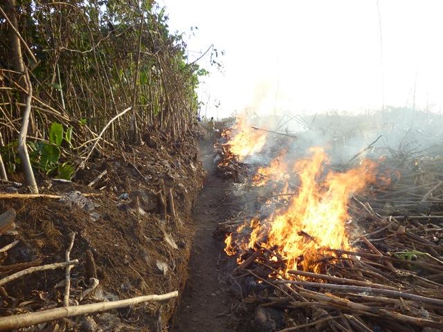 Incêndio no Piratuba já é grave, diz Ibama