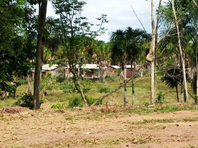 Imap investiga crime ambiental em área de ressaca