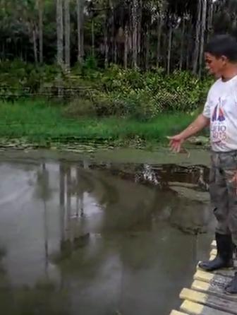 Vídeo: Esgoto sanitário do Macapaba polui afluente da Lagoa dos Índios