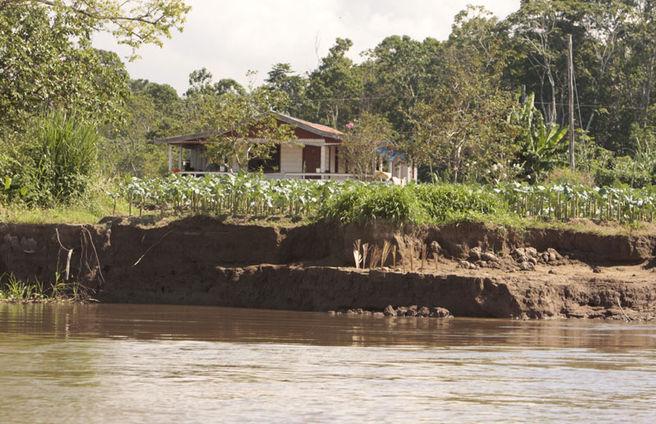 """""""Terra Caída"""": Erosão ameaça vilas no Bailique"""