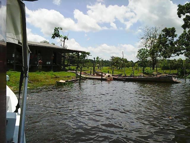 Plantações destruídas: Agricultores de Ferreira Gomes também serão indenizados pela EDP