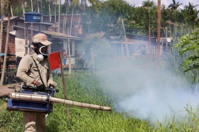No primeiro trimestre: Casos de dengue crescem 300% em Macapá