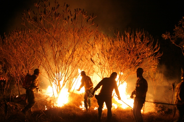 incêndios: Com poucos brigadistas, florestas do AP correm perigo