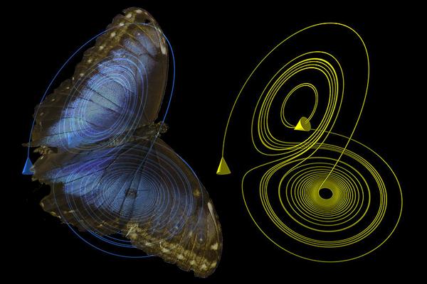 Crônica: O poder das asas da borboleta