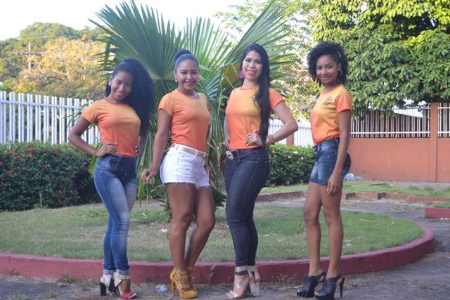 Carnaval 2016: Estilizados escolhem samba enredo e rainha de bateria