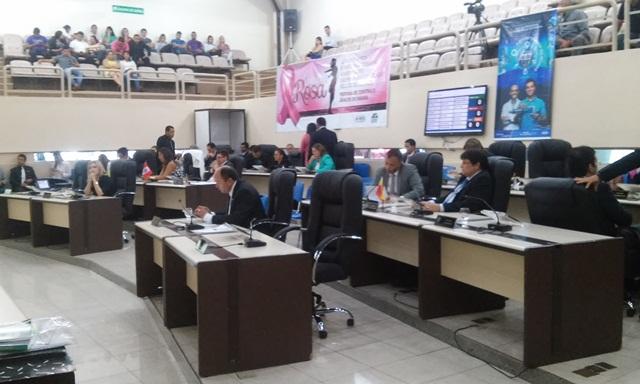 Assembleia Legislativa: Comissão prepara relatório sobre a rede hospitalar