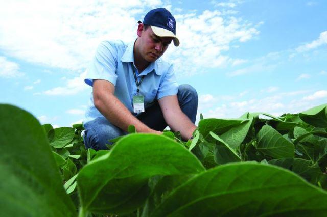 Emprego: Contrata-se engenheiro agrônomo, instrutor de autoescola e outros profissionais